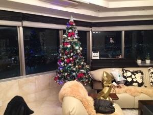 とある場所でクリスマス_a0059035_22051706.jpg