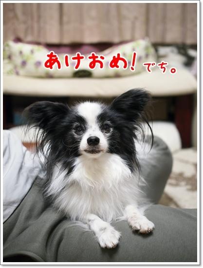 d0013149_00375531.jpg
