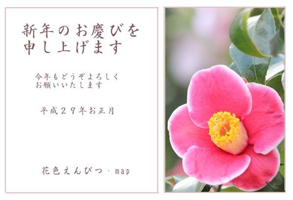 f0146493_17050904.jpg