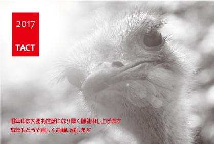 謹賀新年_c0278510_12343138.jpg