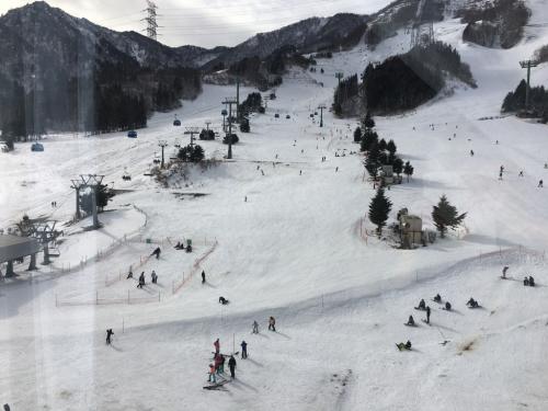 新幹線でスキー場へ⭐️_c0151965_00234945.jpg