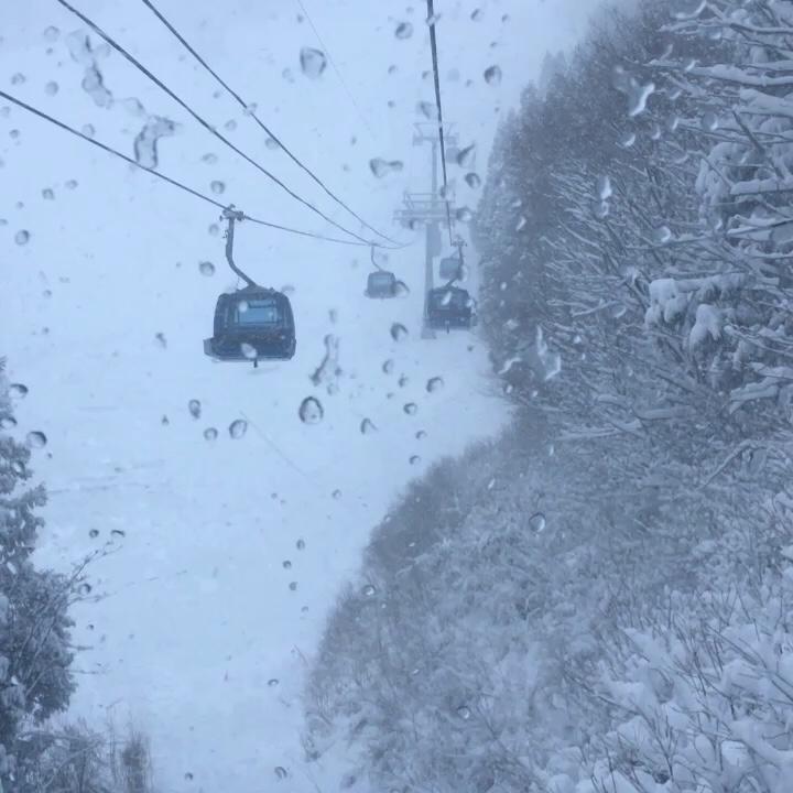 大雪! 苗場スキー場⭐️_c0151965_00341106.jpg
