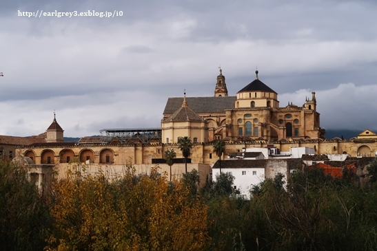 スペイン2016   コルドバ ユダヤ人街・花の小径・メスキータ_d0353281_00011871.jpg