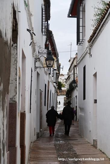 スペイン2016   コルドバ ユダヤ人街・花の小径・メスキータ_d0353281_00080887.jpg