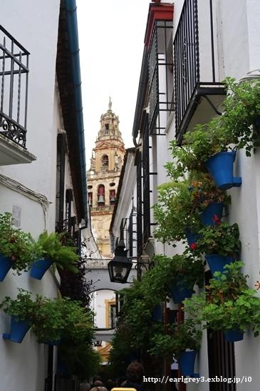 スペイン2016   コルドバ ユダヤ人街・花の小径・メスキータ_d0353281_00122454.jpg