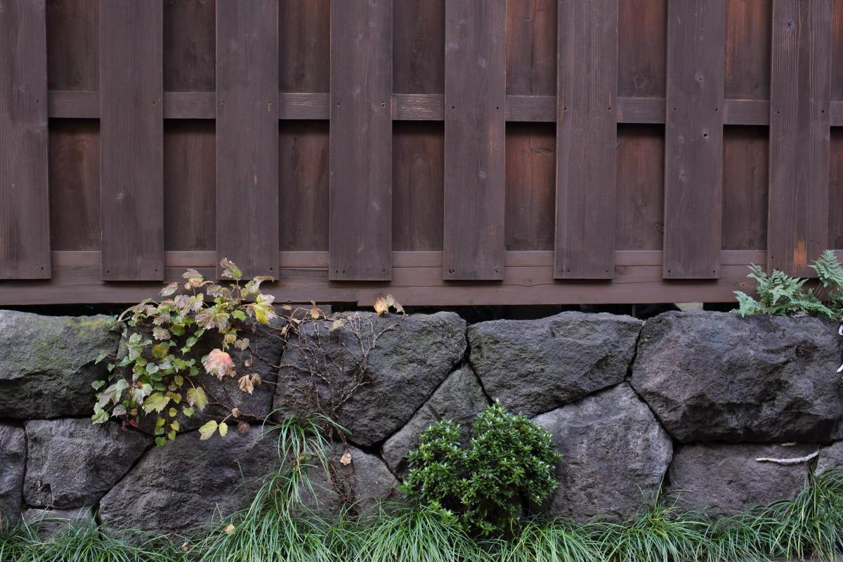 自由が丘~駒沢大学  秋の散歩  _b0061717_13295397.jpg