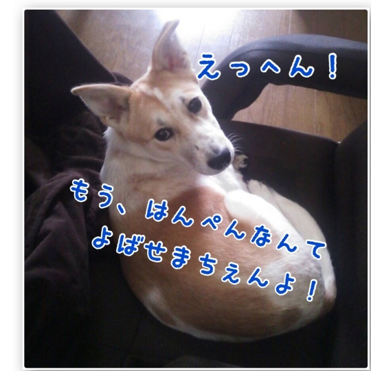 b0207320_14535125.jpg