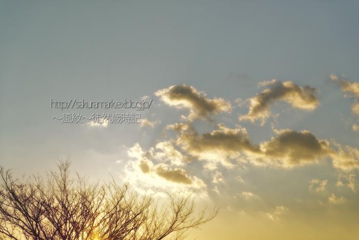 流れゆく冬の夕雲。 (写真部門)_f0235723_21122690.jpg