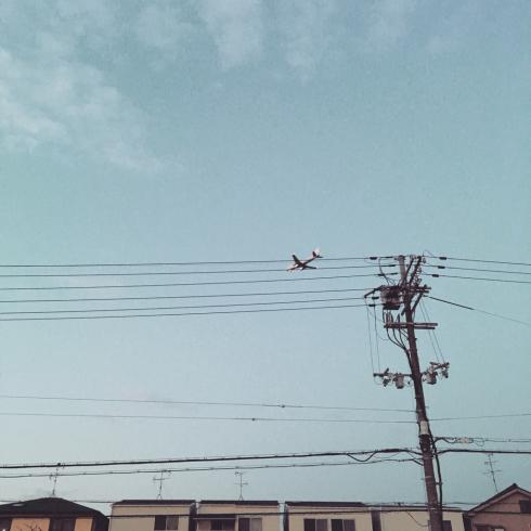 おやすみ日記 - 鈴木ヒラクさん、青葉市子さん、gaspar nikko_c0168222_14174359.jpg