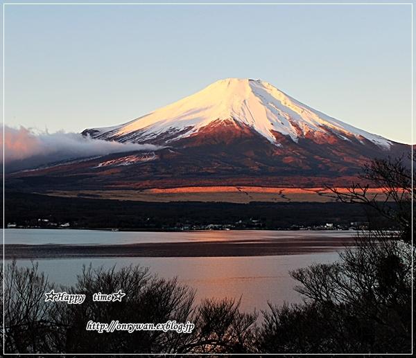 わんこと一緒に富士山へお出かけ♪_f0348032_21375881.jpg