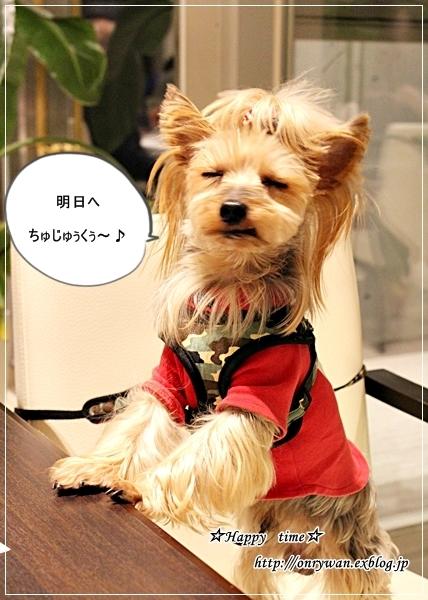 わんこと一緒に富士山へお出かけ♪_f0348032_21381911.jpg
