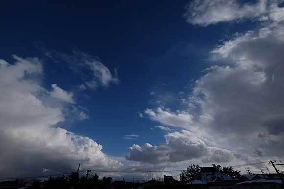 冬の晴れ間_e0220159_17123411.jpg