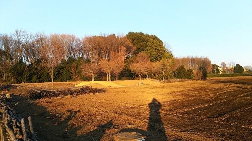 世界中の土の色をならべてみたい_d0244370_06430949.jpg
