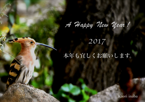 A Happy New Year ! 2017 ! _e0111396_18532990.png