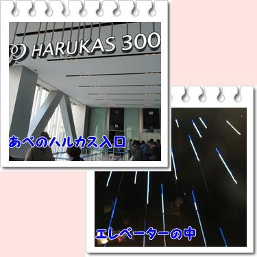 b0254145_20511518.jpg