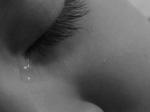 涙の理由_a0037910_09192217.jpg