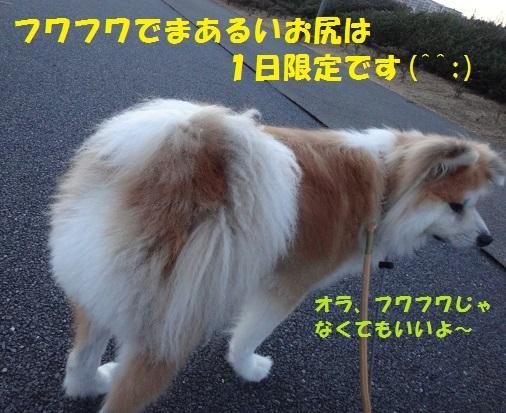 f0121712_23244165.jpg
