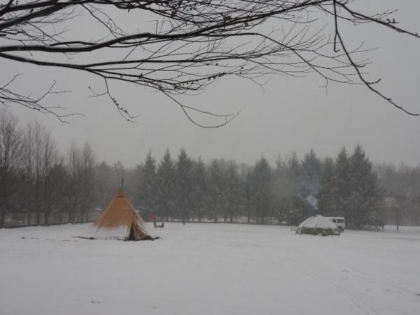 雪が降っています_b0174425_18191148.jpg