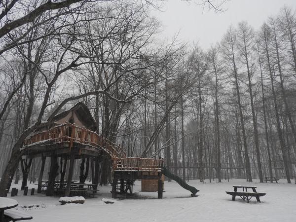 雪が降っています_b0174425_18193267.jpg