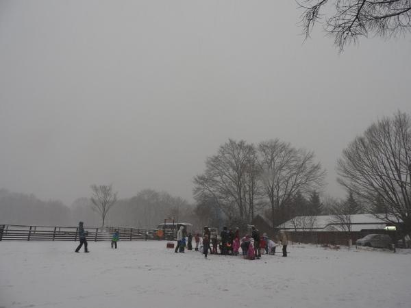 雪が降っています_b0174425_18211219.jpg