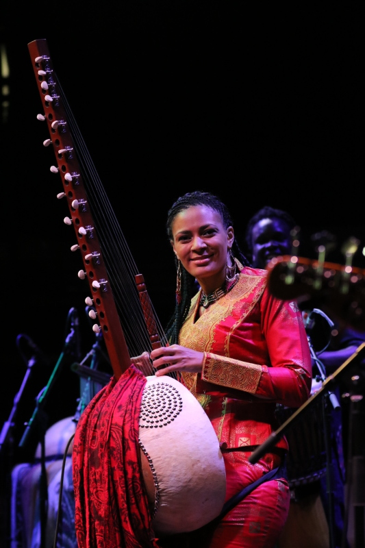 Sona Jobarteh Live in London 2016_d0010432_15053505.jpg