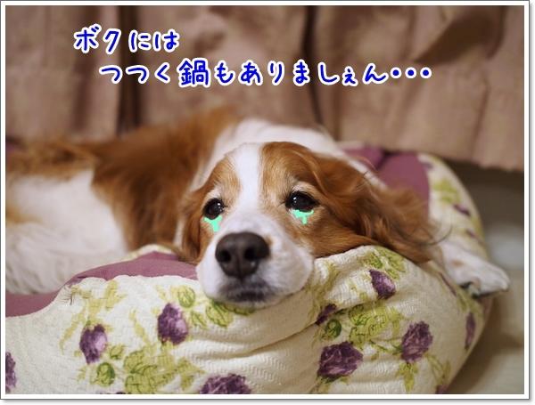 d0013149_23401020.jpg