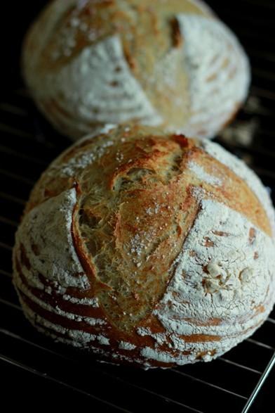 日々のパン 抹茶ツイスト_b0225758_17363912.jpg