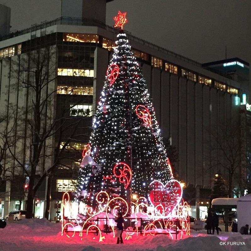 雪の北海道 1 札幌へ♪_a0092659_14470976.jpg