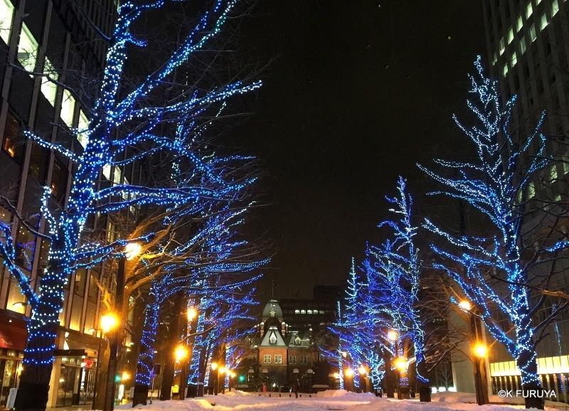 雪の北海道 1 札幌へ♪_a0092659_14573461.jpg