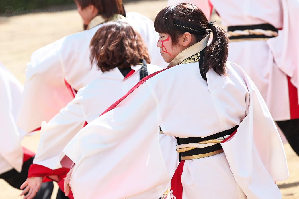"""早稲田大学""""踊り侍"""" @ がんこ祭(浜よさ)2016_c0187584_12283373.jpg"""