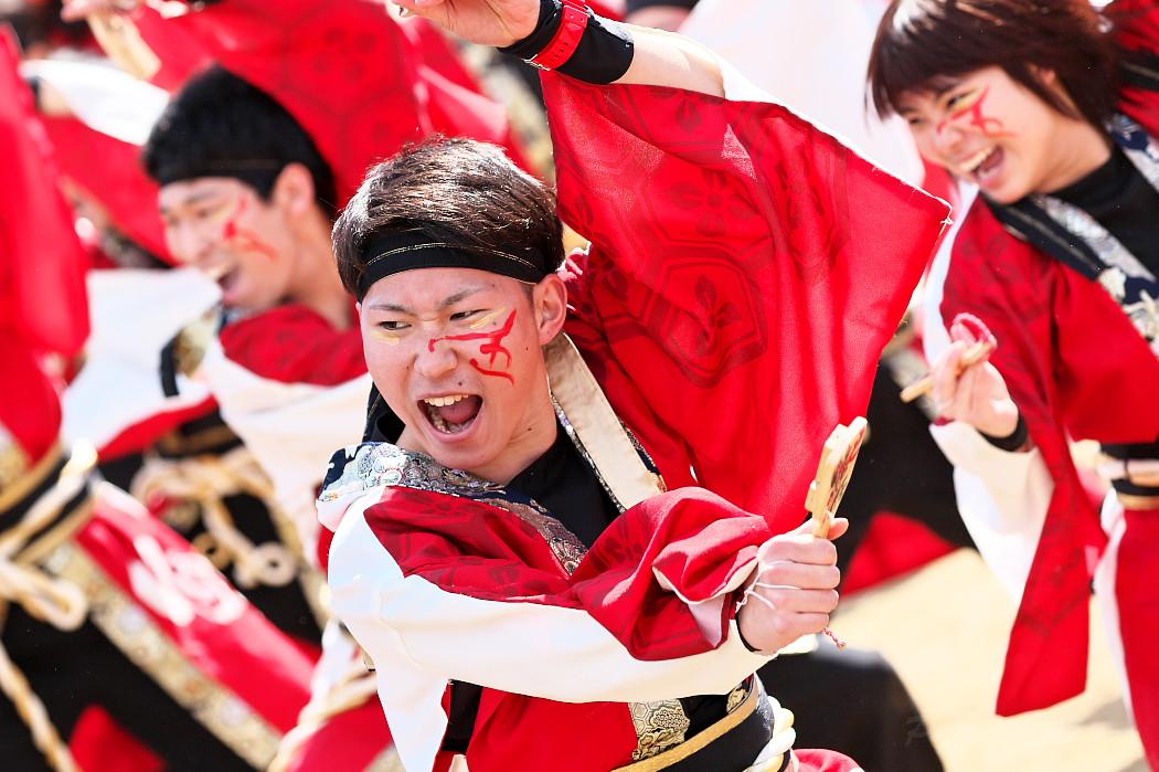 """早稲田大学""""踊り侍"""" @ がんこ祭(浜よさ)2016_c0187584_12283942.jpg"""