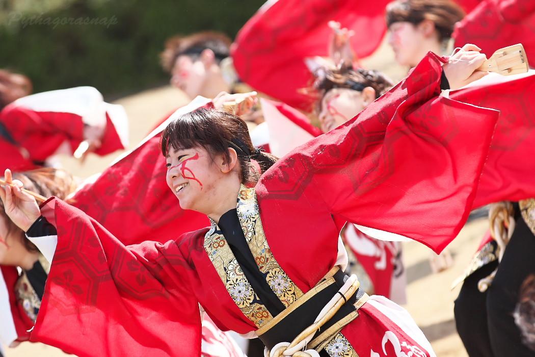 """早稲田大学""""踊り侍"""" @ がんこ祭(浜よさ)2016_c0187584_1228455.jpg"""