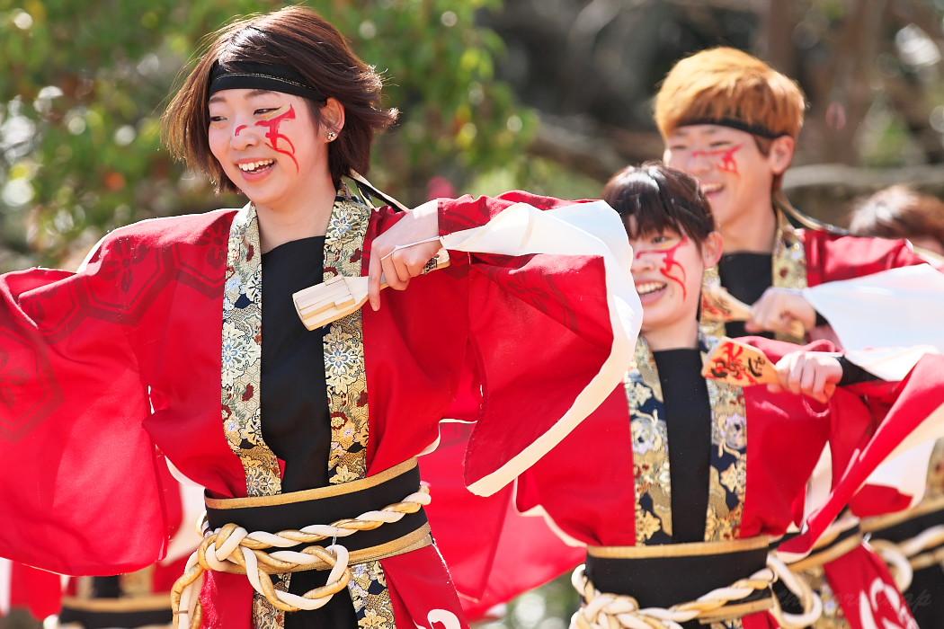 """早稲田大学""""踊り侍"""" @ がんこ祭(浜よさ)2016_c0187584_12303640.jpg"""