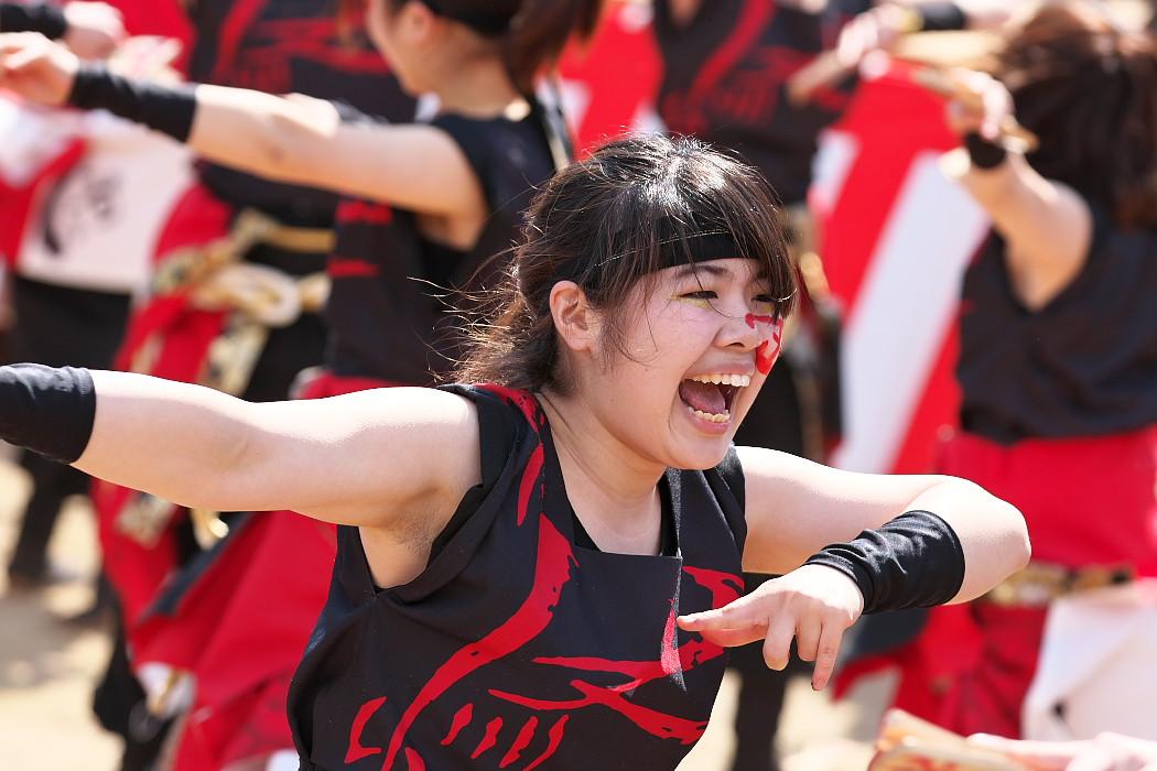 """早稲田大学""""踊り侍"""" @ がんこ祭(浜よさ)2016_c0187584_12304368.jpg"""