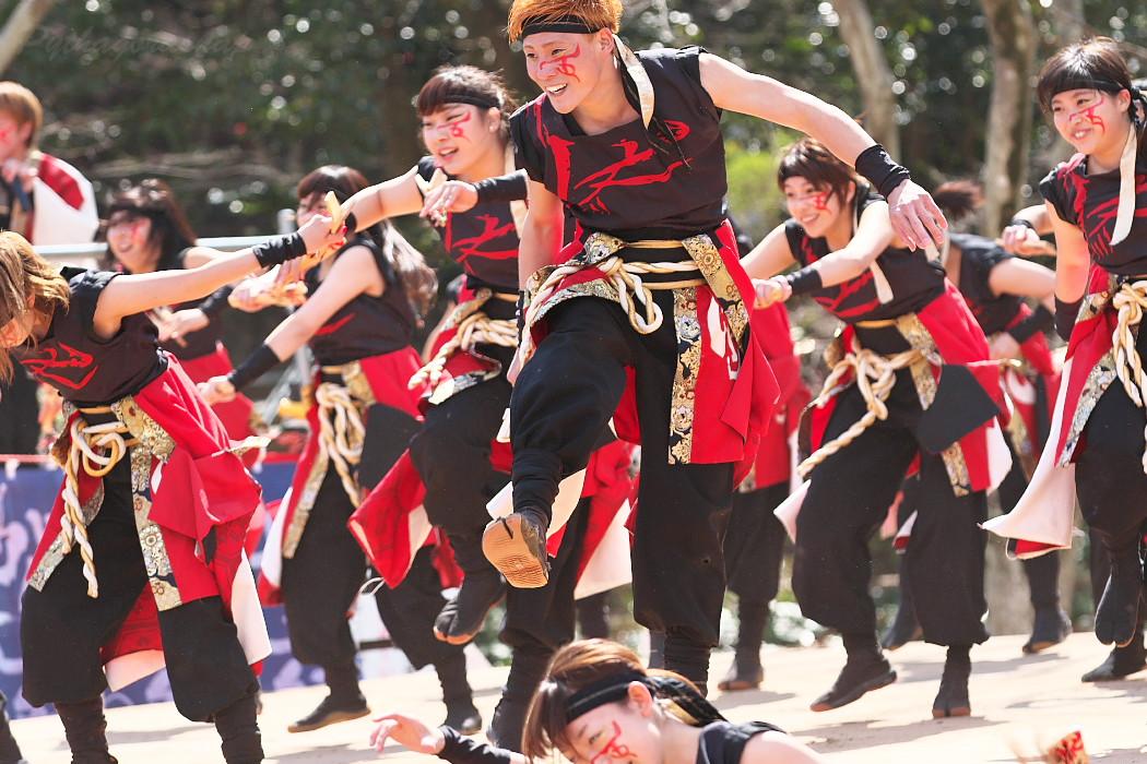 """早稲田大学""""踊り侍"""" @ がんこ祭(浜よさ)2016_c0187584_123050100.jpg"""