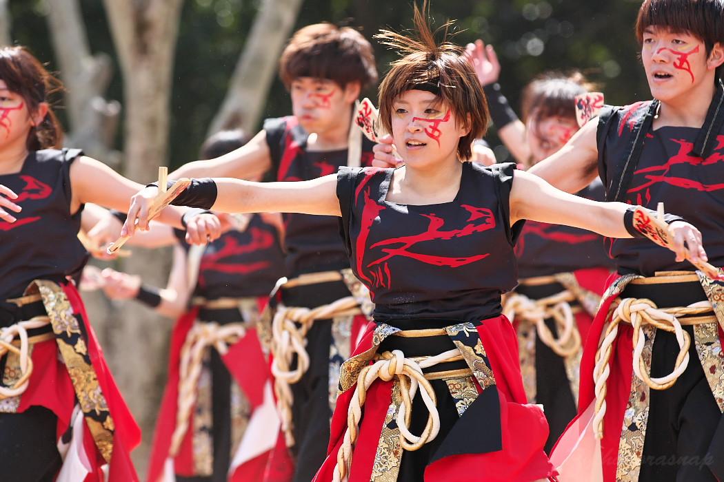 """早稲田大学""""踊り侍"""" @ がんこ祭(浜よさ)2016_c0187584_12305665.jpg"""