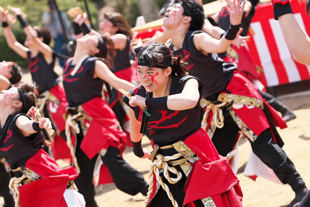 """早稲田大学""""踊り侍"""" @ がんこ祭(浜よさ)2016_c0187584_12311676.jpg"""