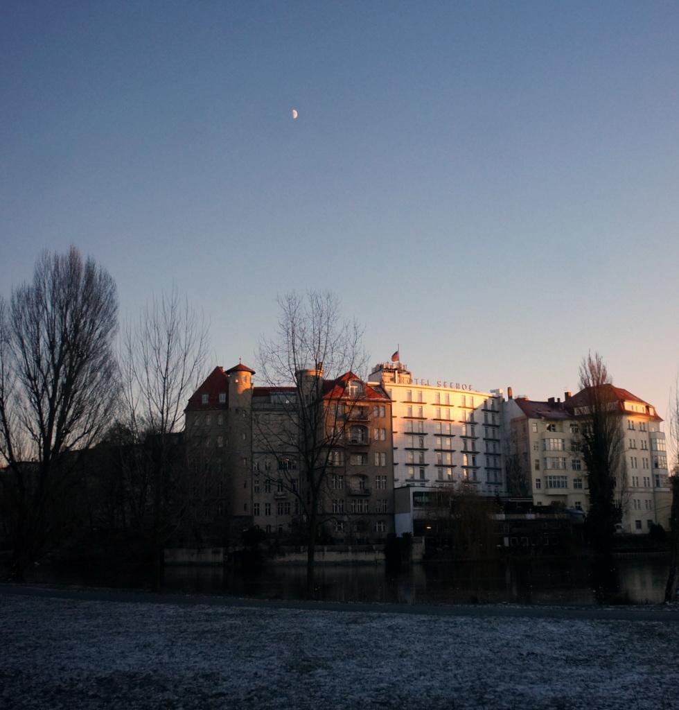 −8℃の湖畔散歩_c0180686_20593707.jpg