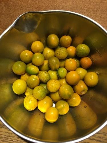 夜中に金柑を煮る。_d0087595_21370746.jpg