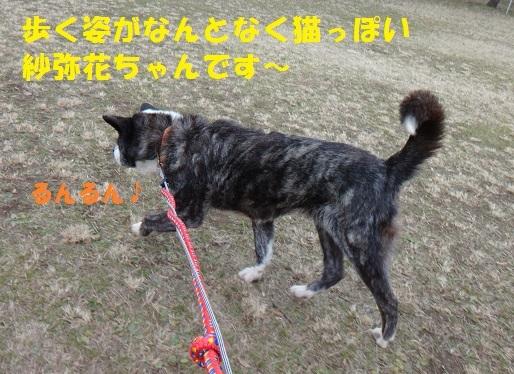 f0121712_15053171.jpg