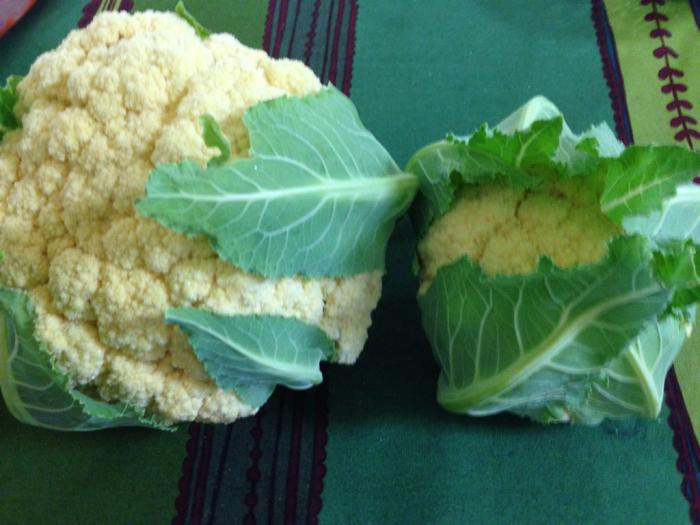 わが家のカリフラワーと京都八百一セイボリーさん京野菜のフレンチ_f0155431_21085501.jpg