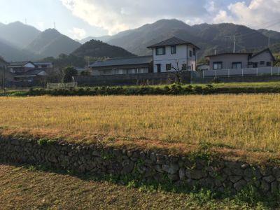 徳島〜香川へ_d0136540_22290751.jpg
