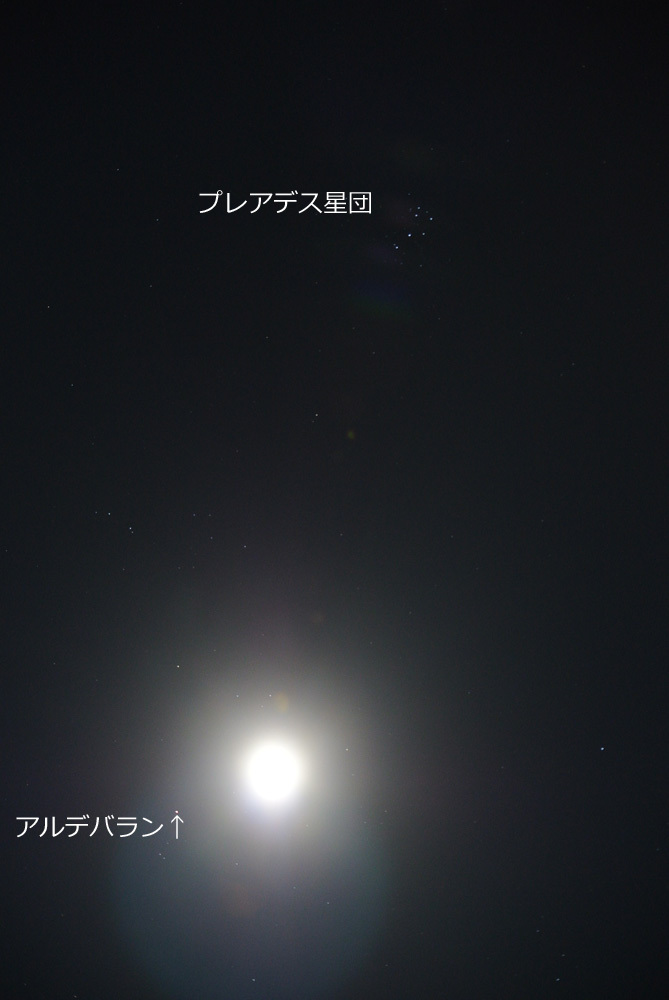 c0350853_19324472.jpg