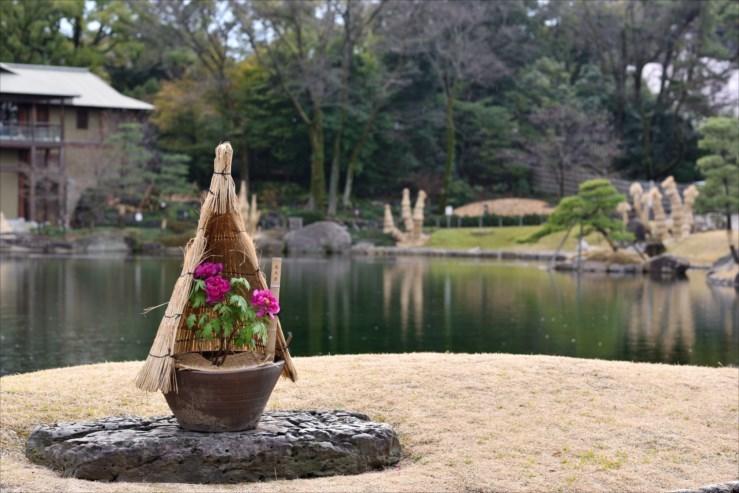 徳川園の松飾りと冬牡丹_e0170058_19065978.jpg