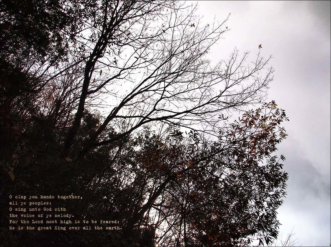 f0198771_00004960.jpg