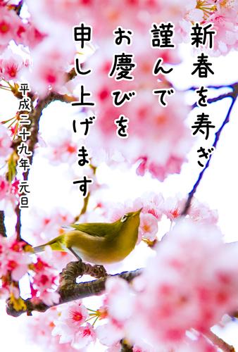 c0159092_23061365.jpg
