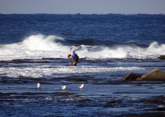 冬の風合瀬海岸にて♪_a0136293_17271136.jpg