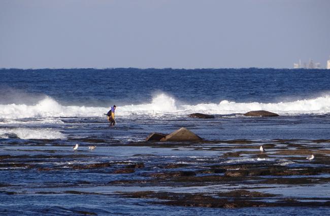 冬の風合瀬海岸にて♪_a0136293_17361795.jpg