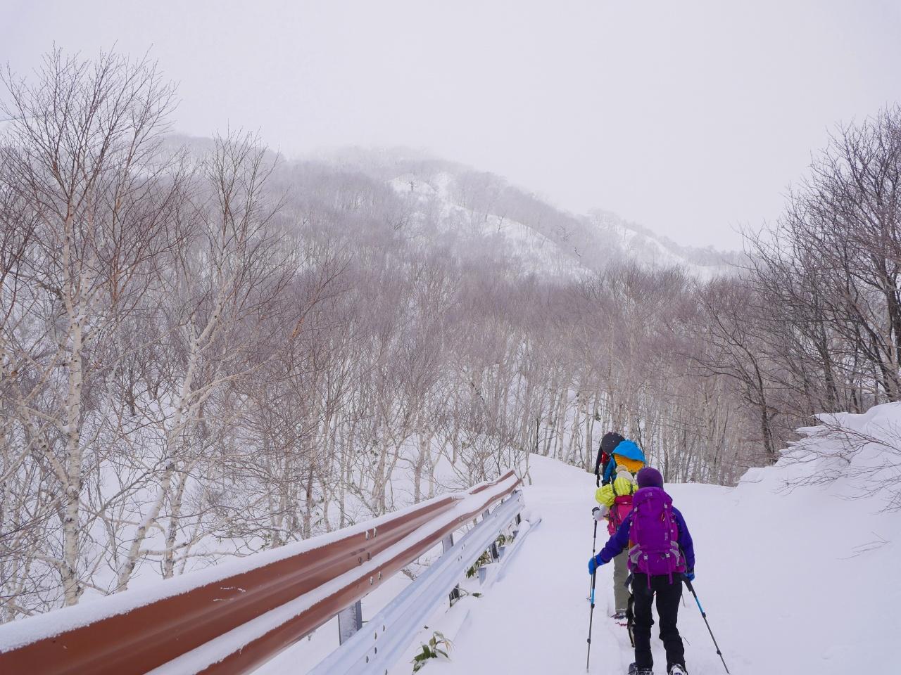 紋別岳から748mピークピストン、2017.1.8-その1-_f0138096_2104233.jpg