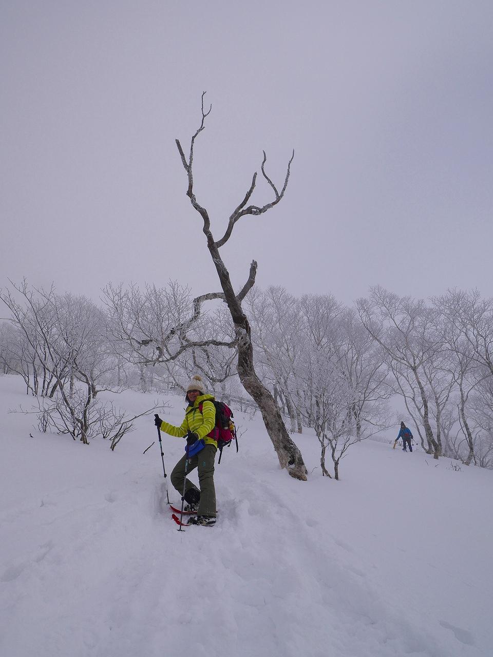 紋別岳から748mピークピストン、2017.1.8-その1-_f0138096_2114110.jpg